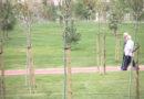 Compromís da a conocer un proyecto creado desde la participación ciudadana para instalar un recinto ferial